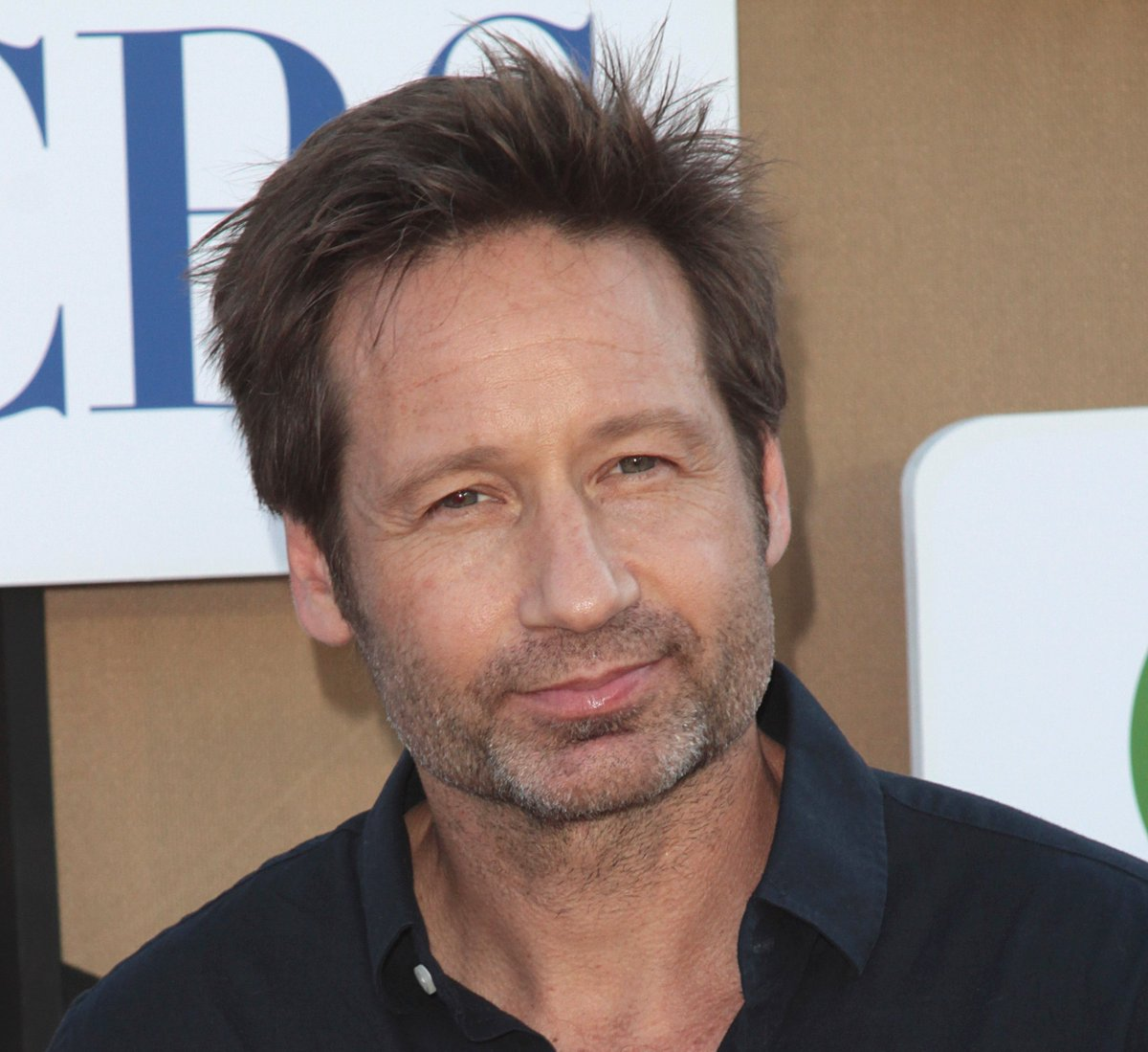 David Duchovny | News, Photos and Videos | Contactmusic.com