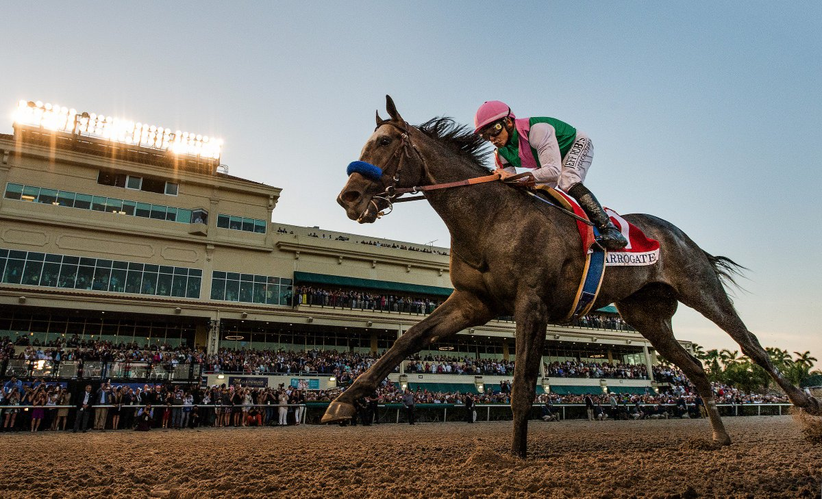 Arrogate – Pegasus World Cup 2017