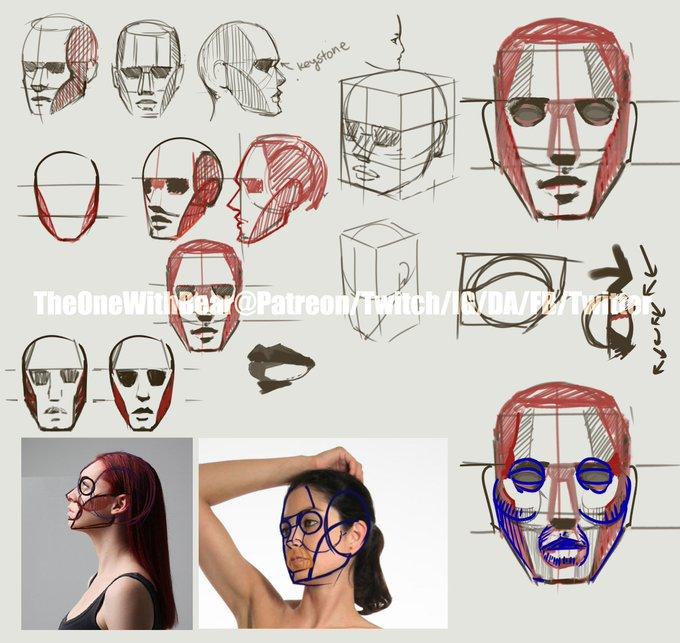 ʕ•ᴥ•ʔSaturday Study 012 Face Planesʕ•ᴥ•ʔ