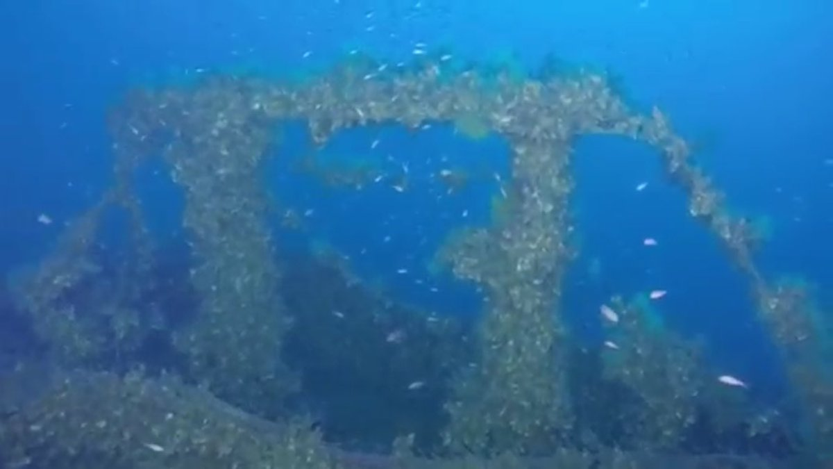 """العثور على حطام الغواصة البريطانية """"توت عنخ آمون"""" C3XQ9nvWcAAWgJF"""