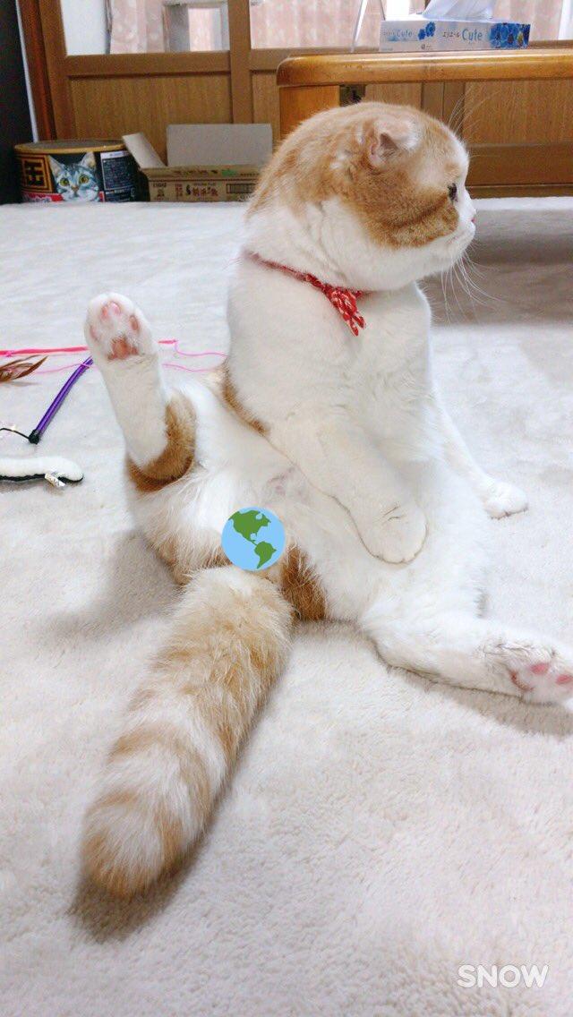 おはうなさんは朝のトイレに失敗し、足とおちりを洗われました。なぜかその後私の膝をテシテシしてきた。何…