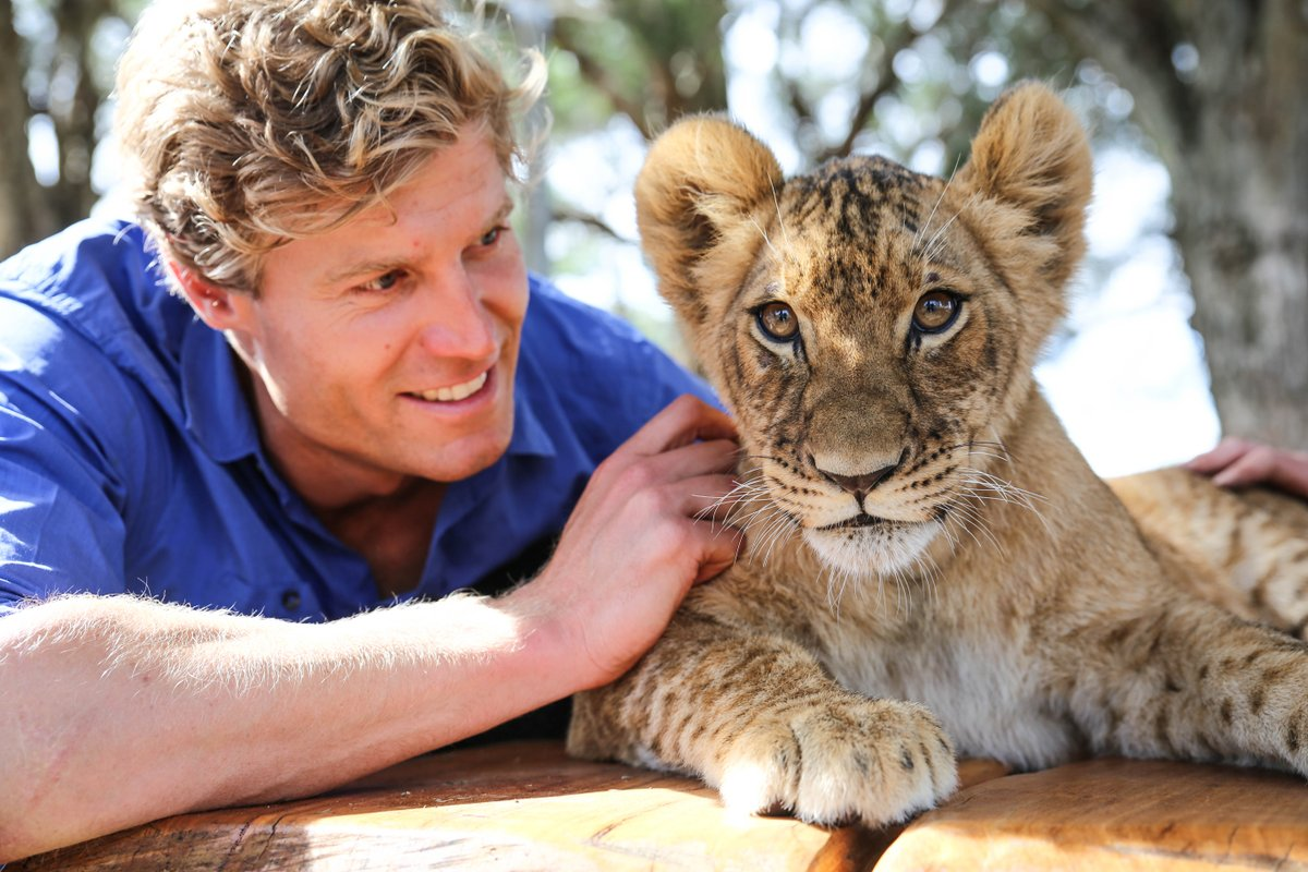 Zambi the #lion cub is getting quite big! Follow her journey tomorrow on an #PetVet-- only on @CBSDreamTeam. @CBSDaytime<br>http://pic.twitter.com/G5QVBrHKGI