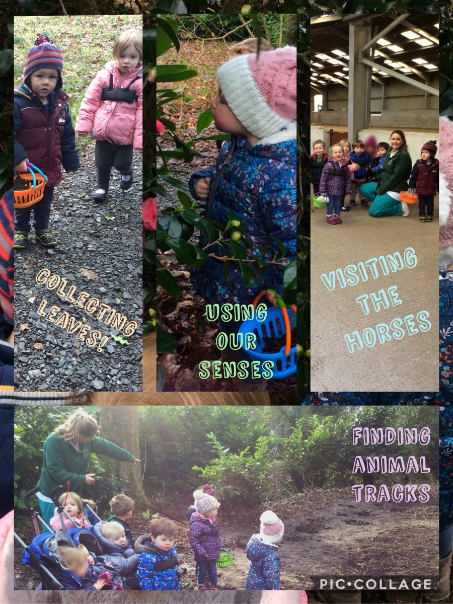 The Sparrows have had a lovely day using their senses to explore the environment #forestschools <br>http://pic.twitter.com/9QbiAC6Db8