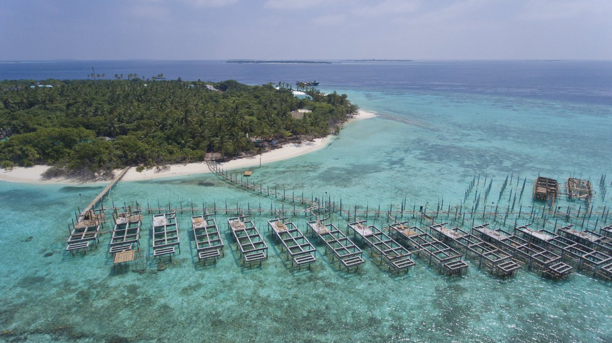 Reethi Faru Resort On Twitter Water Villas In The Making