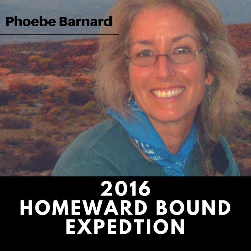 un academic impact on twitter meet phoebe barnard a biologist and