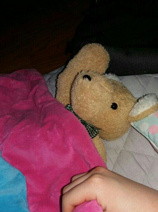 곰로니랑 핑크이불 나눠덮는 건 #친척집 에 간 어른이의 필수코스 아닙니까 곰로니는 #곰인형 이름. 내가 지은.