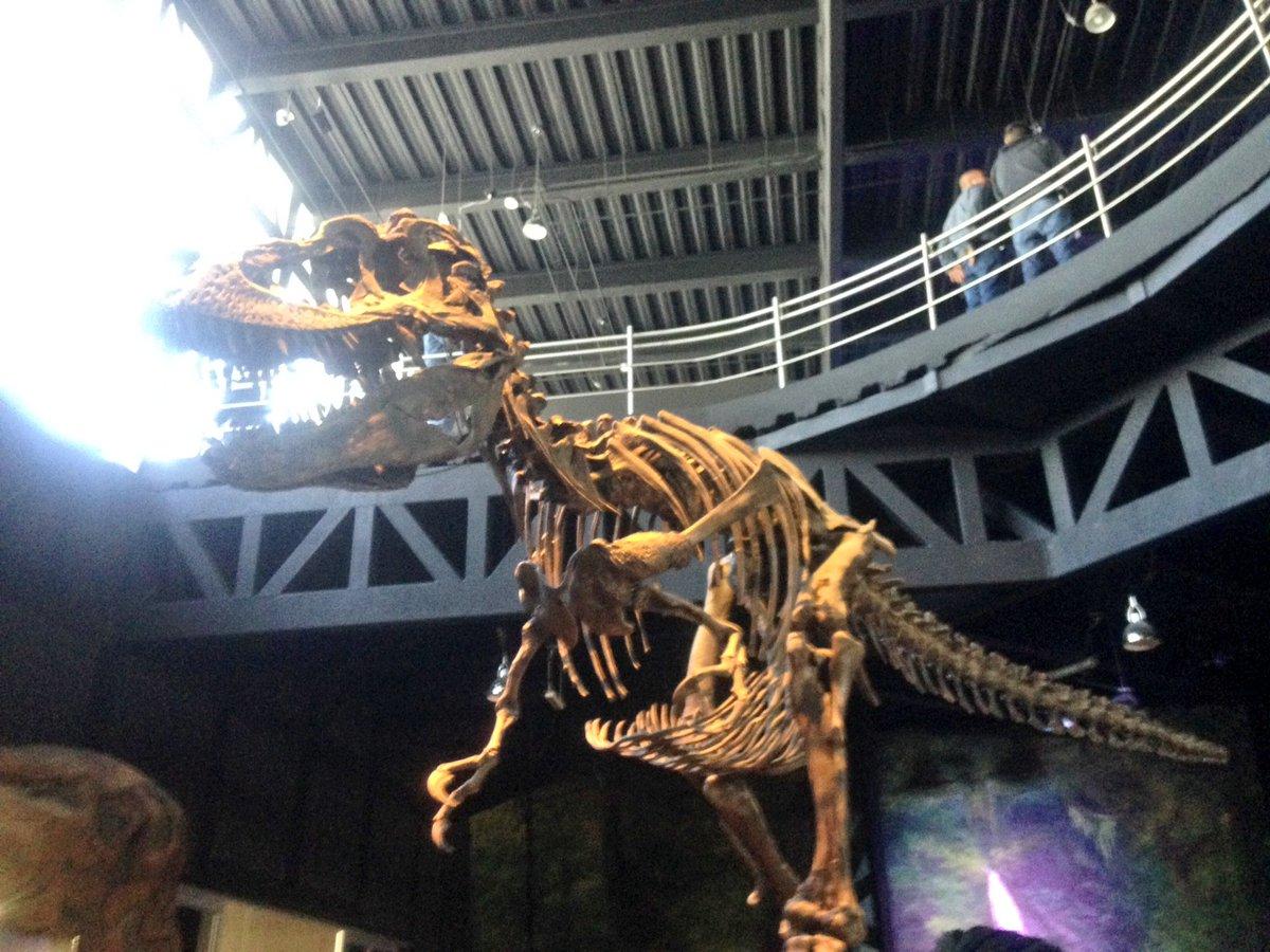 Así quedó el Museo de la Evolución en Tehuacán (FOTOS)