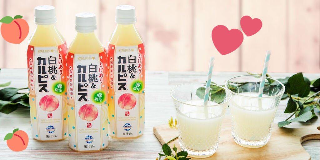 🎉🍑「とけあう白桃&『カルピス』」🍑新発売🎉  「カルピス」と国産の白桃果汁の出会い💖がもたらす芳醇…