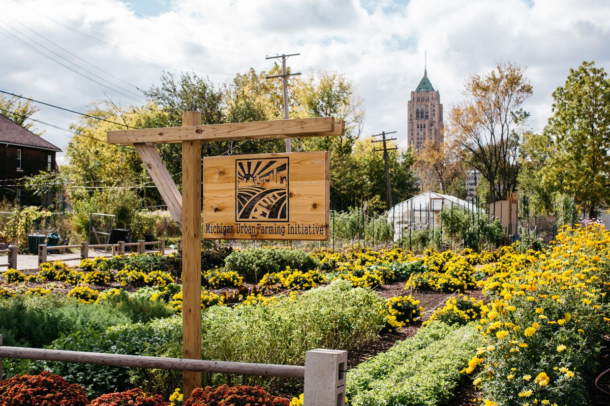 Growing Agrihoods: A 2 acre farm in Detroit offers free food, green space &  hope https://t.co/Uu0mubEb0F @CivilEats https://t.co/GnS9qhUYe9