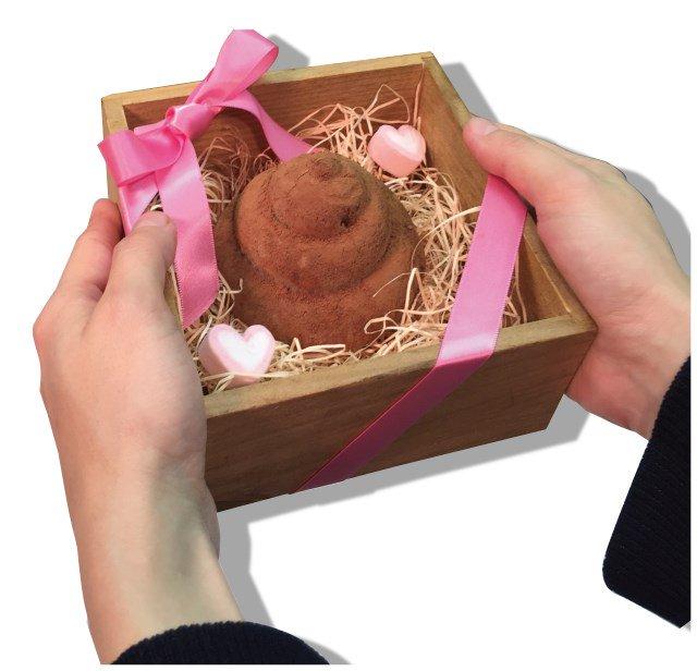 ヴィレヴァンはバレンタイデーをどうしたいんだよ  結果は捨てた 「人体臓器」と「うんち」のバレンタイ…
