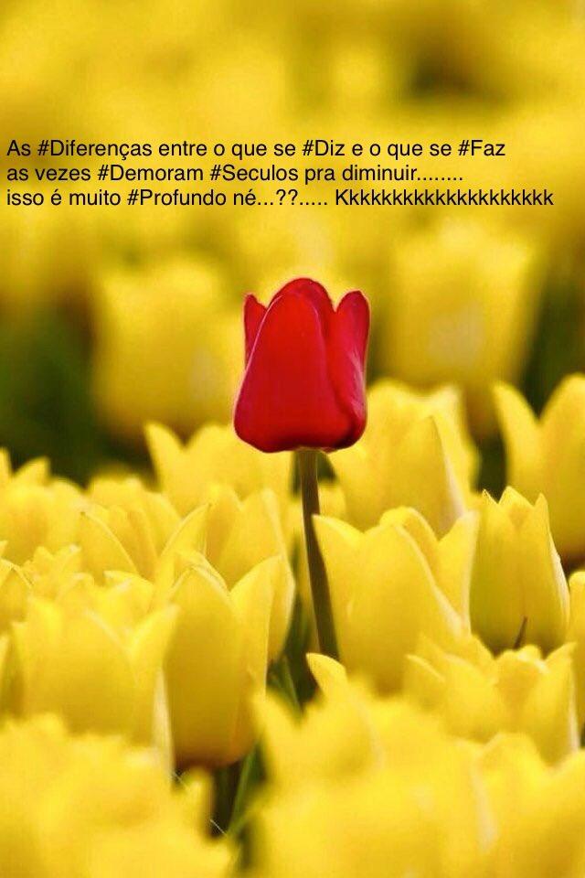 6 que ficam #FelizNatal...agora vou #Surfar..aqui em #Tambaba o dia tá #Lindo..kkkkkk<br>http://pic.twitter.com/C9h8sxpEqH