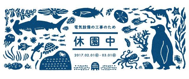 お伝えしておりますとおり、2017年2月1日㊌から3月1日㊌まで、葛西臨海水族園は休園いたします。く…