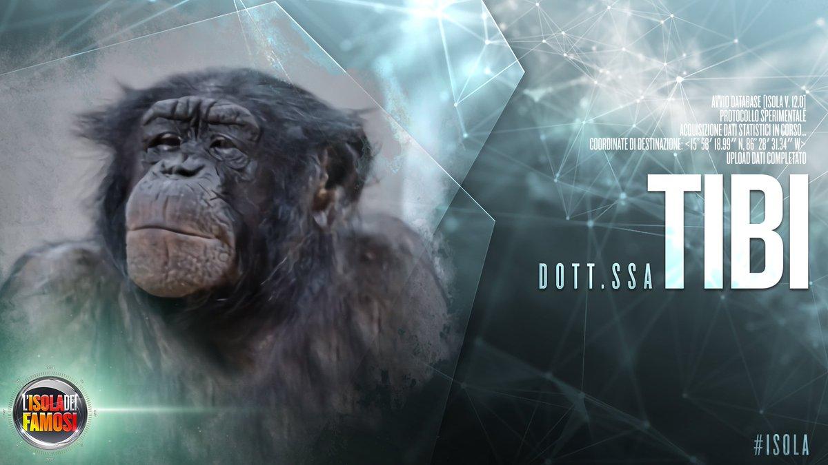Darwin dating calcolatrice scimpanzé un sacco di pesce libero sito di incontri