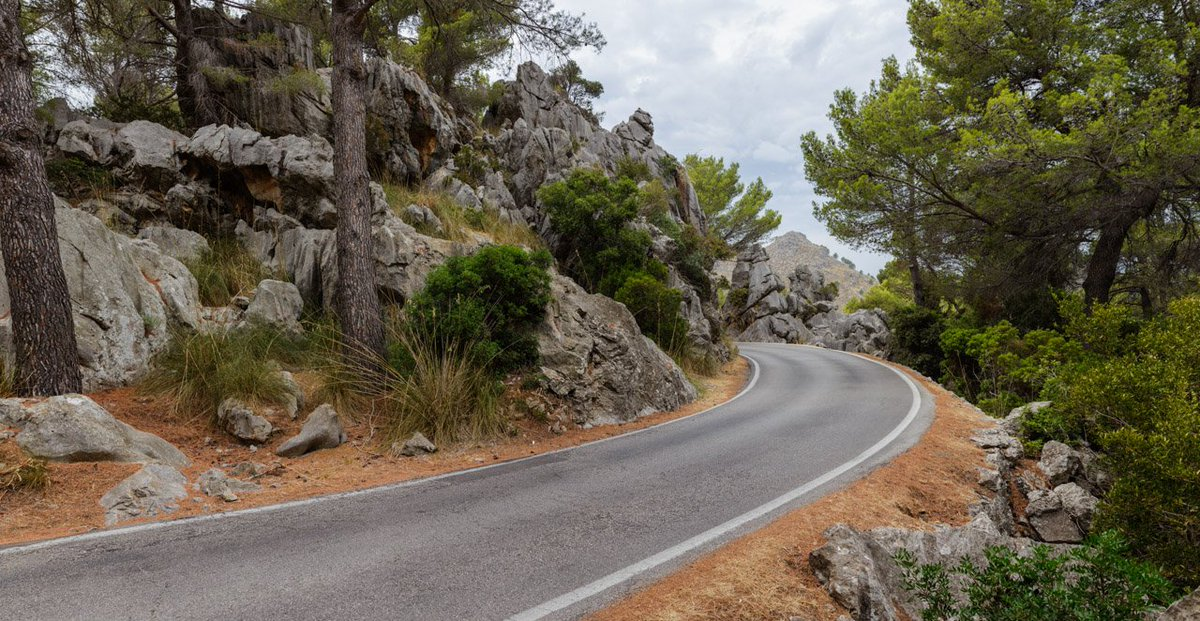 Sunny road on twitter forest road 2 cgi 3d hdri hdri hdr sunny road on twitter forest road 2 cgi 3d hdri hdri hdr background backplate roads driving photography automotive car cloudy thecheapjerseys Image collections