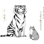 トラにも必要かも?ネコにたしなみを教わるトラ!