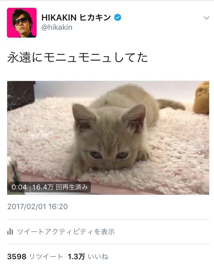 ツイッターの動画に再生回数が表示されてる!!!
