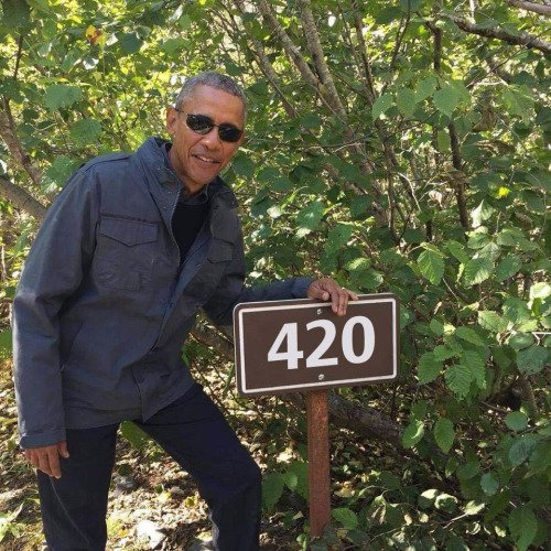 #MyFarewellWordsWouldBe DONT PASS TRUMP THE BLUNT   #TheHippieConcept2K17  #EverythingHippie<br>http://pic.twitter.com/oo8M2r7lHy
