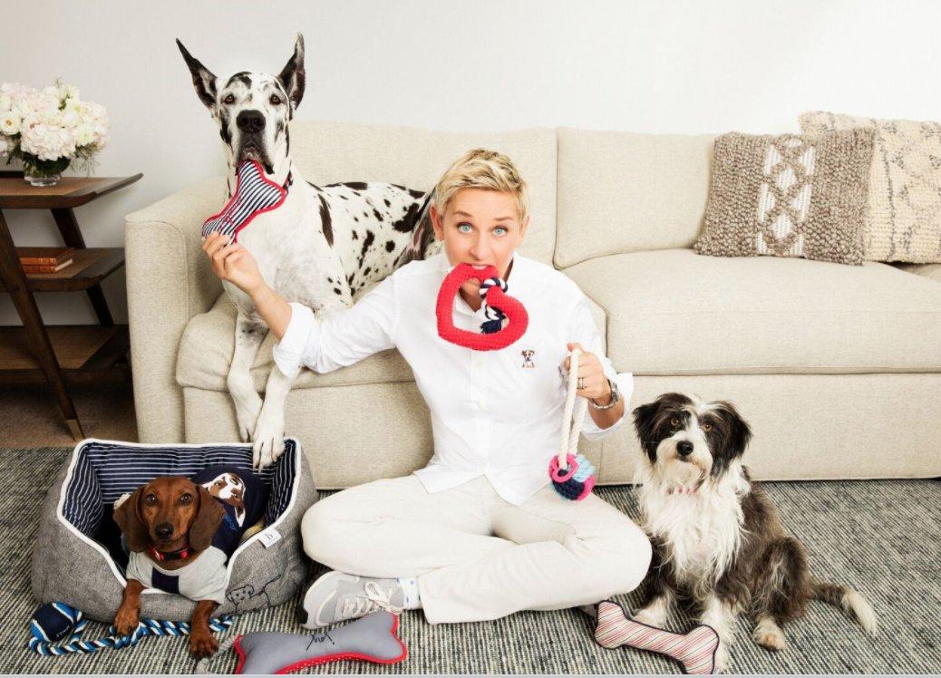"Ellen DeGeneres on Twitter: ""My pet toys are at @PetSmart"