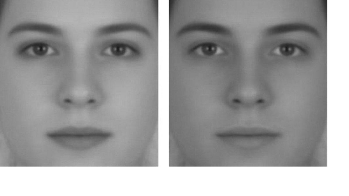 性別の錯視。2つの顔は元は全く同じなのに、コントラストが高い方は女性に、低い方は男性に見える。
