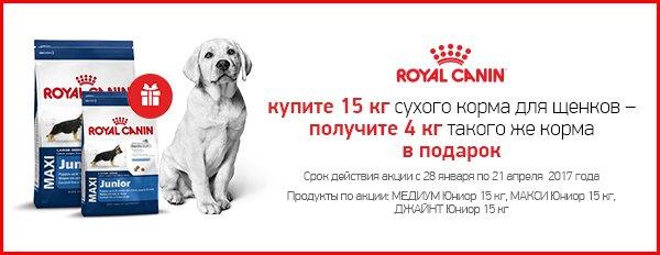 магазин для собак интернет магазин дешево с бесплатной доставкой