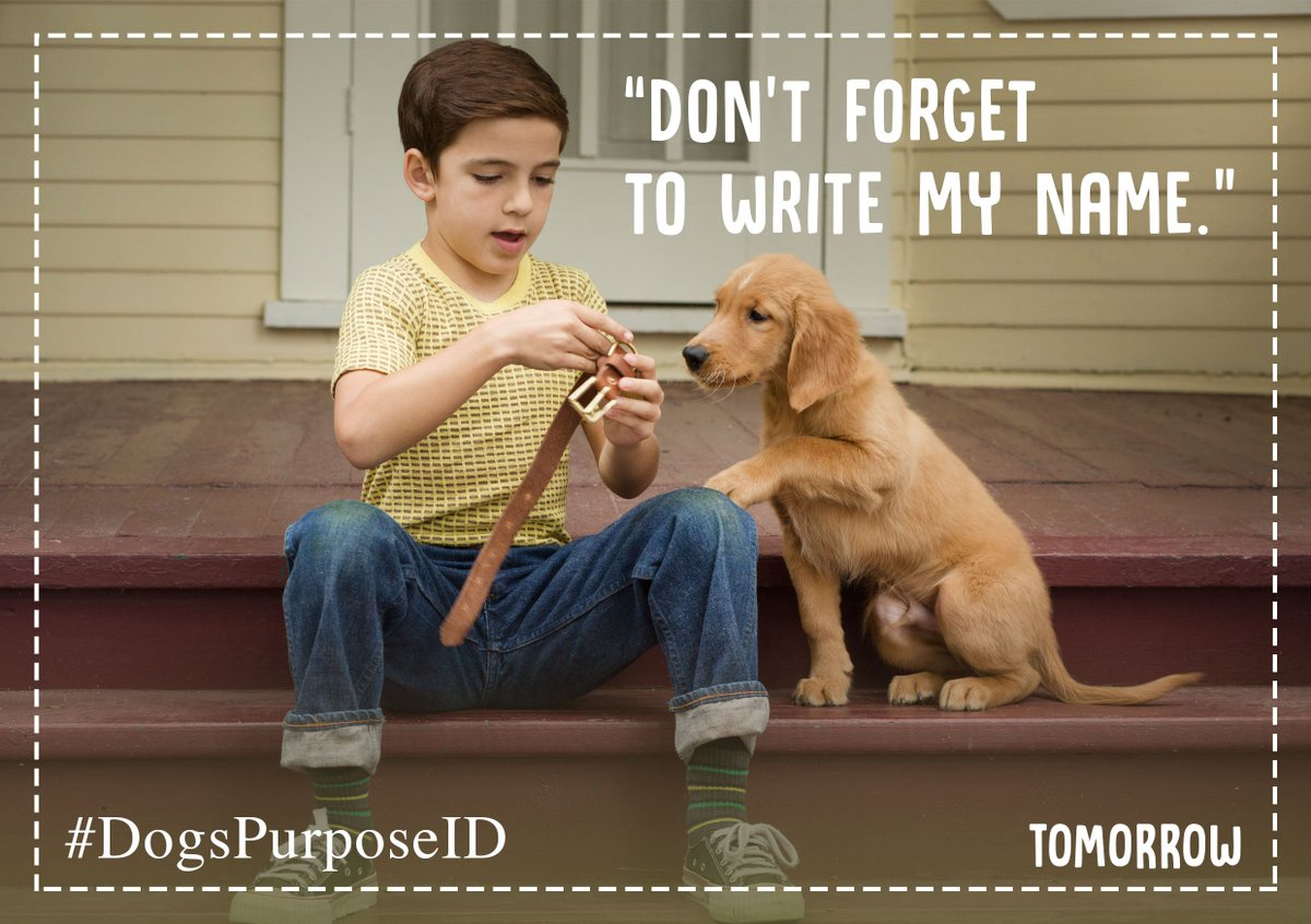Ethan Montgomery A Dog S Purpose