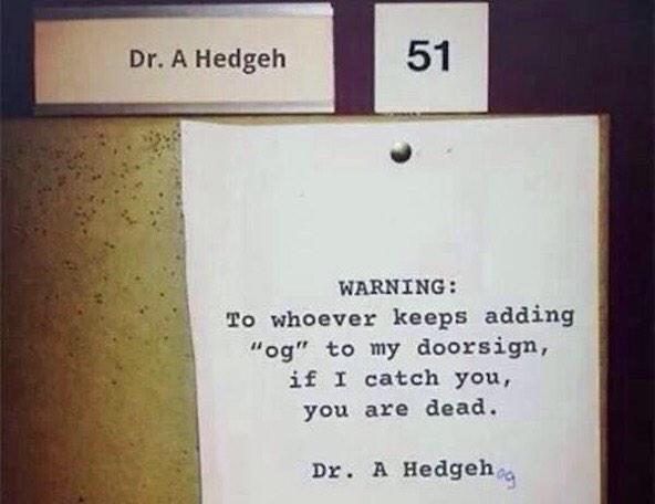 It's #HedgehogDay - so here's an oldie but a goldie... https://t.co/2yAYZYdFXw