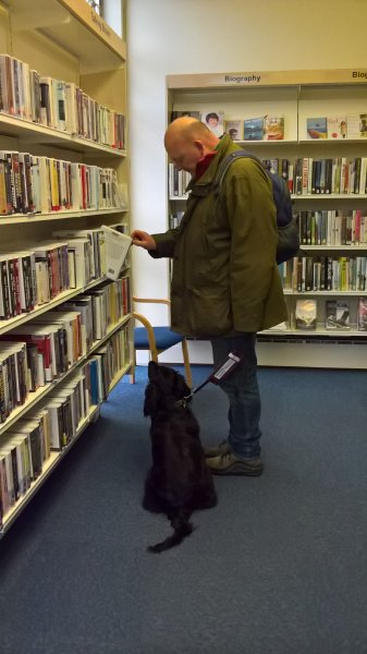 One of our puppies in training doing an amazing job at keeping quiet in the library! Shhhhh.
