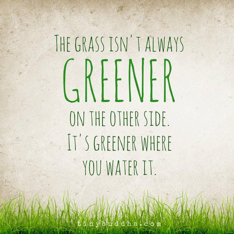 Grass isnt always greener other side