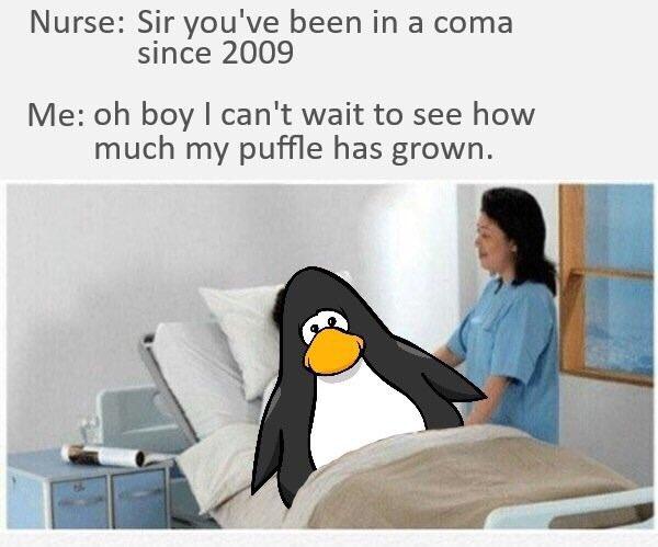 Club Penguin Memes (@CP_M3MES) | Twitter