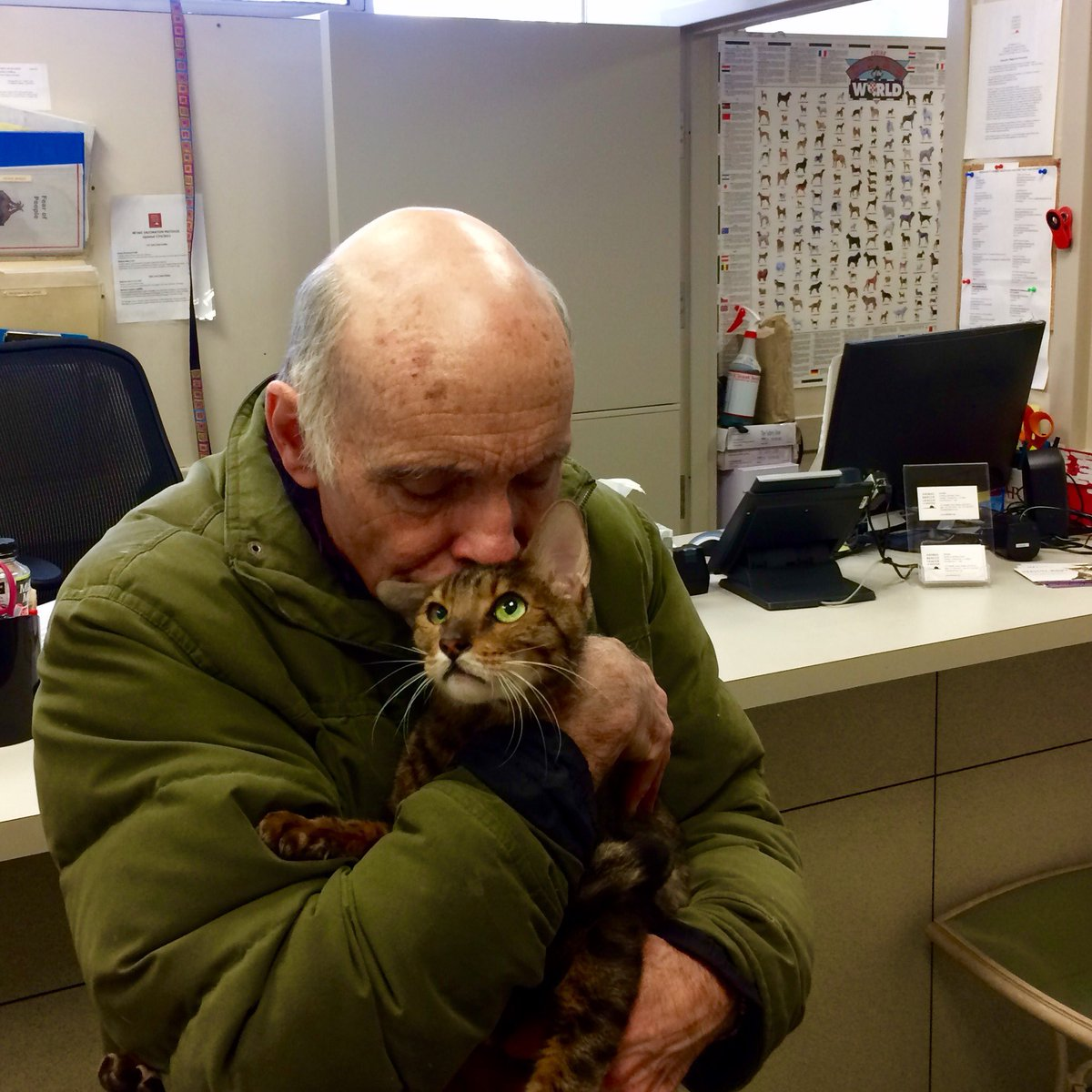 BEST STORY EVER! Cat stolen from car and abandoned in hotel lobby reunited with owner. https://t.co/kEiC16NE92