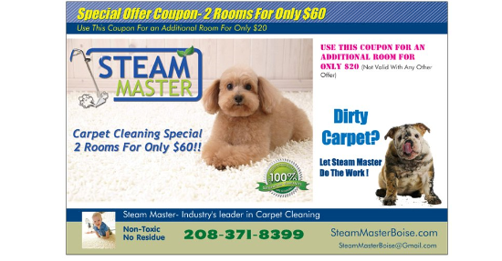 Zerorez San Go Carpet Cleaning And Stain Removal