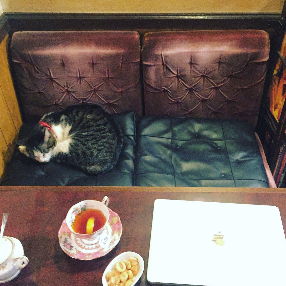 「すみません、相席でも良いですか」って店員さんに案内された席がこれ。このあとむちゃくちゃ課金(飲み物…