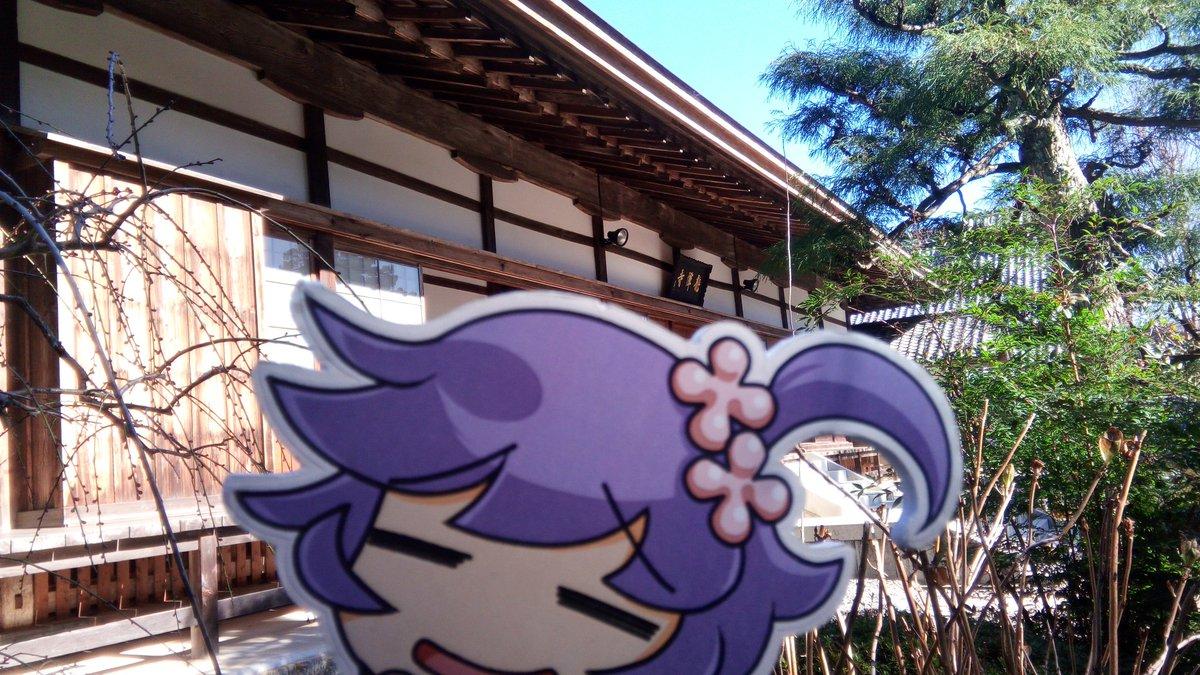 門弟★戦国武将姫muramasa【公式...