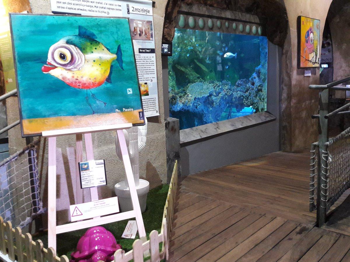 aquarium de limoges aquariumlimoges