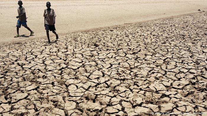 Nigeria, Sud Soudan, Somalie, Yémen: si rien n&#39;est fait, 20 millions de morts de faim d&#39;ici 6 mois  https:// limportant.fr/infos-monde/3/ 353761 &nbsp; …  #Monde <br>http://pic.twitter.com/MK4bJasSyz