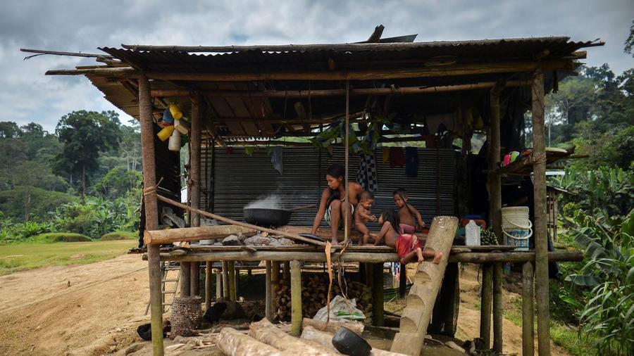 Colombie: dans le nord-est du pays, la communauté indigène meurt de faim  https:// limportant.fr/infos-monde/3/ 353766 &nbsp; …  #Monde <br>http://pic.twitter.com/v7UZZImqfw