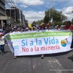 Neues aus dem LichtBlick #Regenwald - Kritik an aktueller ecuadorianischer #Bergbaupolitik unerwünscht. FK https://t.co/nOm1jNkQ5U