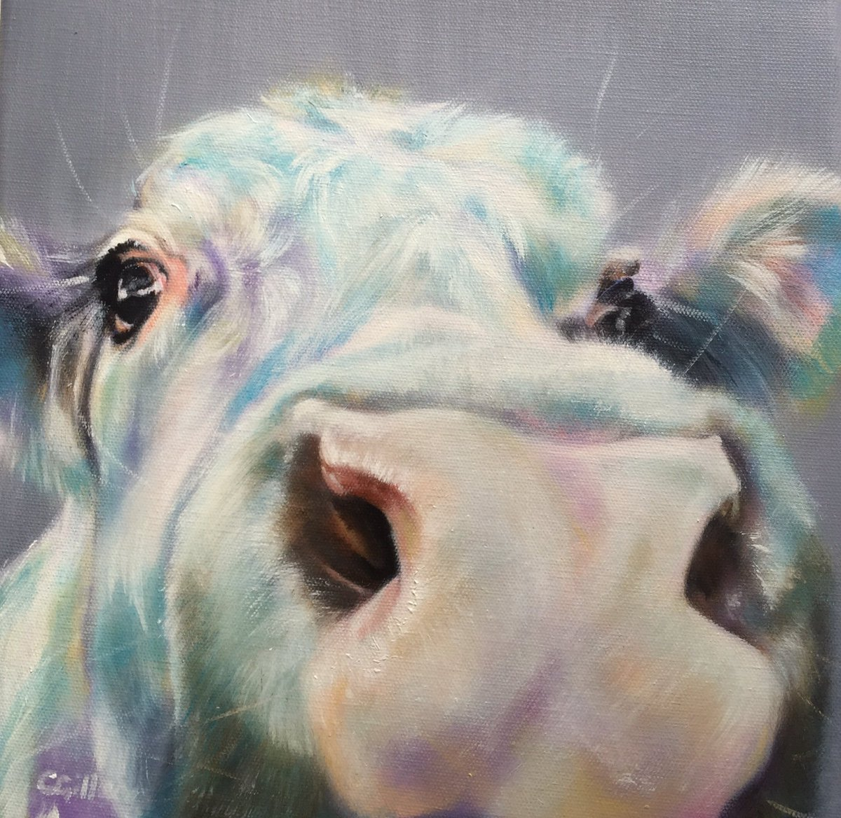 Hello there Friday-coming in for a closer look #colour_collective #opalgrey #cow #nose #oil #painting #gallery #art #moo #zoom #animal #farm<br>http://pic.twitter.com/GQ9MYXeOS8