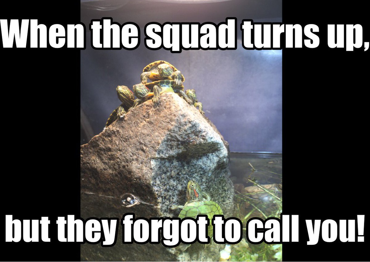 Am I right?!? #squadissuses