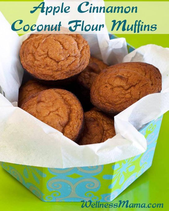 Coconut Flour Apple Cinnamon Muffins Recipe (Grain Free)