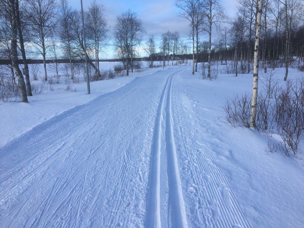 Ladut kunnossa - terveisiä Kuusamosta! #hiihto #Kuusamo #ladut #talvi #loistavakeli<br>http://pic.twitter.com/a26OrS1SgG