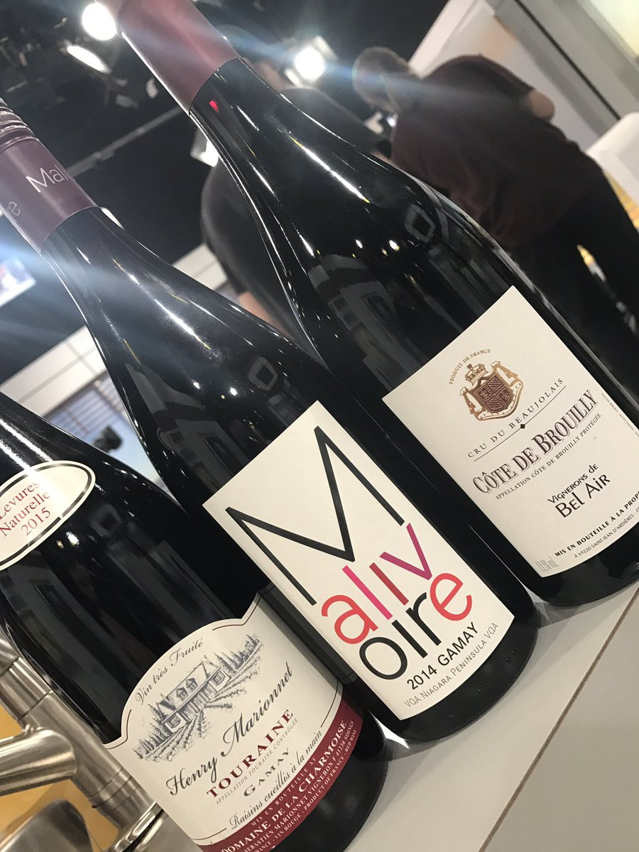 3 bons vins rouges fait de Gamay! @salutbonjour @EveMarieLortie @TVAreseau @SAQCellier @tvaqc @mymdesc @bergeronmelanie #vin #vins #gamay<br>http://pic.twitter.com/4n1jB3n2BZ