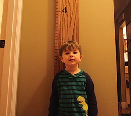 Make a Growth Chart of Kids