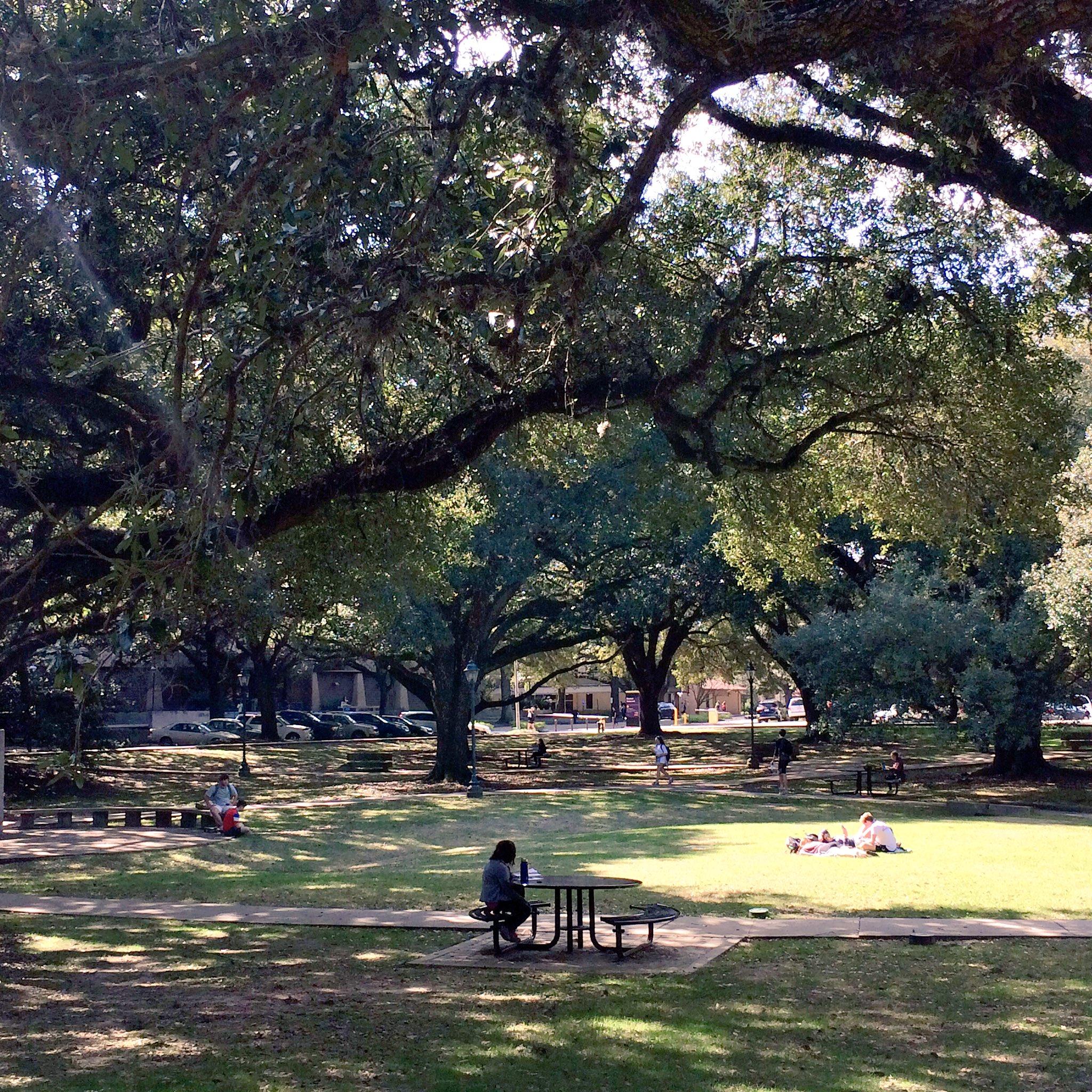 Monday's goal - spend as much time as possible outside. #myLSUhome https://t.co/0bR1aMAXAV