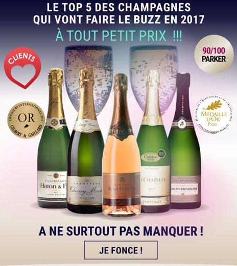Le top 5 des #champagnes à ne pas rater en 2017  http:// ow.ly/daFx308IRbU  &nbsp;   #instantannin #vinatis<br>http://pic.twitter.com/j723sGNxKp