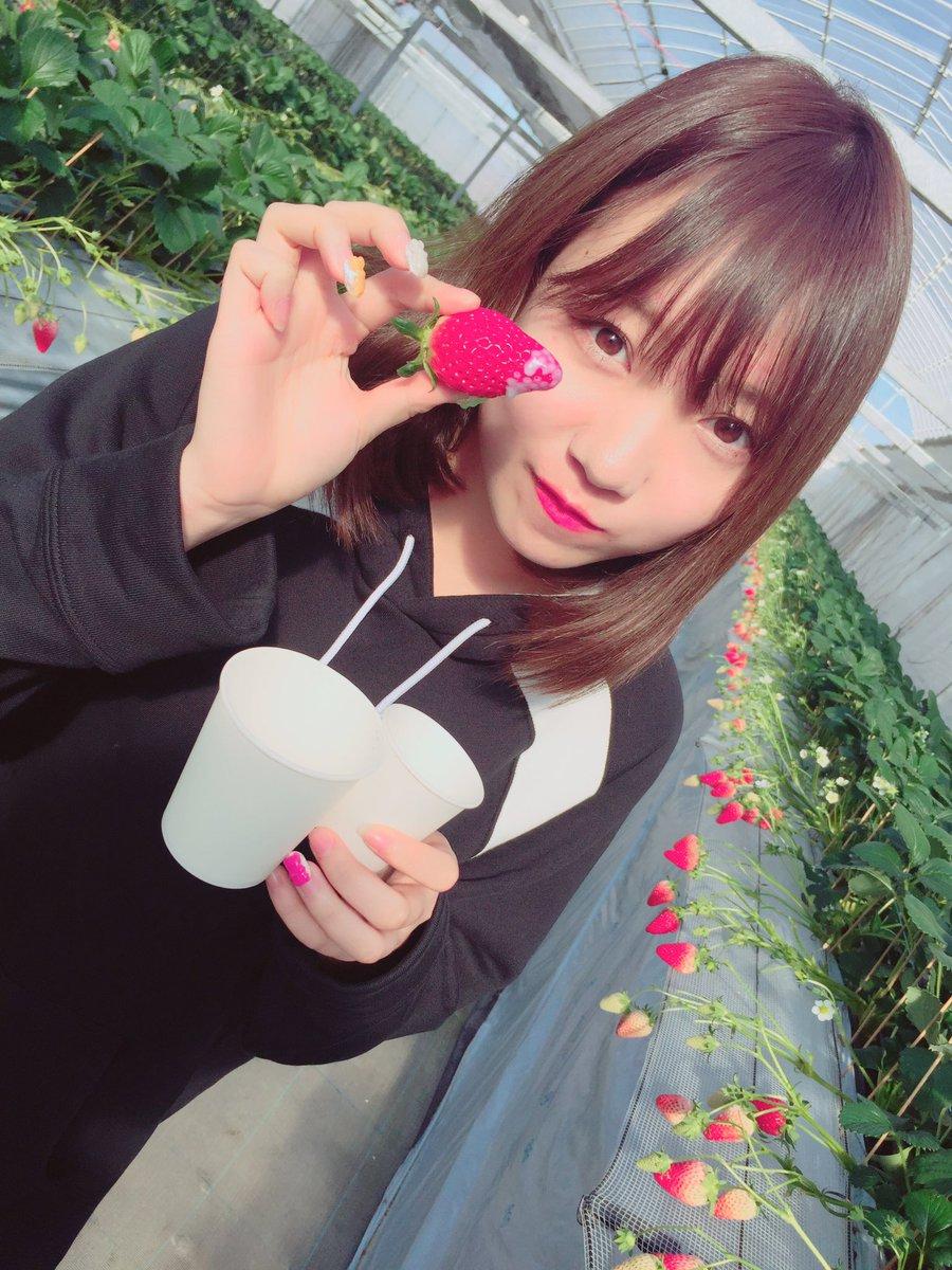 イチゴを食べる可愛い京佳