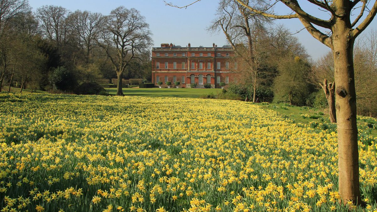 RT @ClandonParkNT For the first time in two years our garden will be open in spring...look forward to seeing you back from 4 March https://t.co/ZIorKagNsa