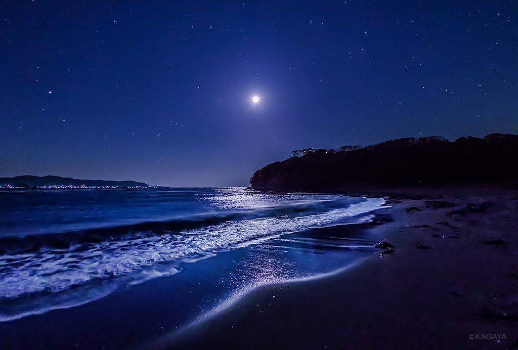 月光に照らされる海。その透明ないざないに吸い込まれそうな夜。(今朝未明、千葉県房総半島にて撮影)今日もお疲れさまでした。明日も穏やかな1日になりますように。 pic.twitter.com/vae6RQ2VnO