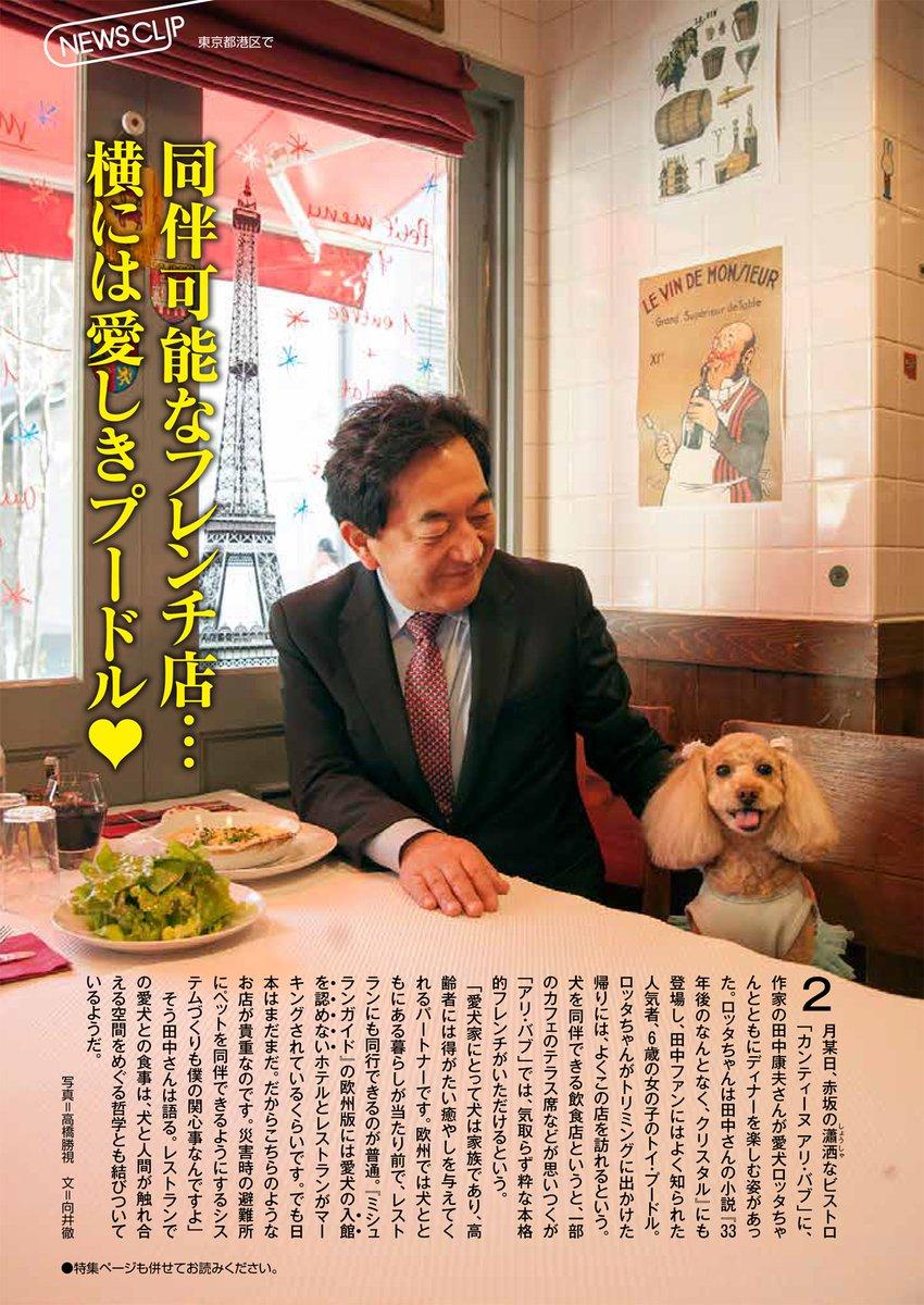 「田中康夫 犬」の画像検索結果