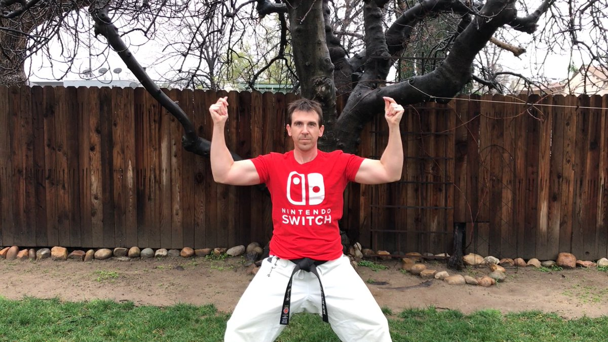 Nintendo Switch - Shotokan Karate picture and video on Paul Gale Network.